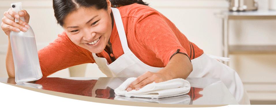 Gestione las tareas y la limpieza de hogar eficazmente for Contrato empleada hogar
