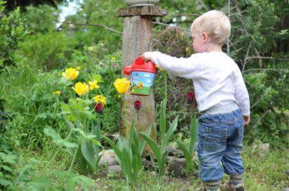 que edades deben los hijos colaborar en las tareas domesticas-regando flores