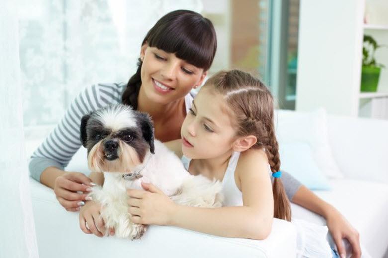 ¿Casa limpia y mascota? ¡Es posible!