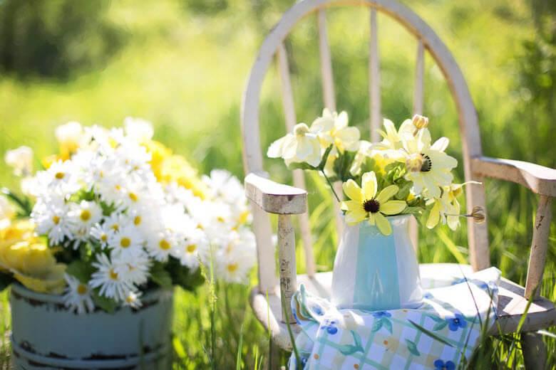 Cómo limpiar y mantener tu jardín en verano