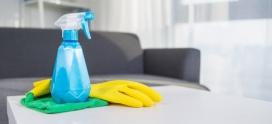 Los 5 productos de limpieza de hogar imprescindibles
